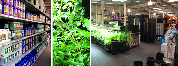 how to become a hydroponic retailer