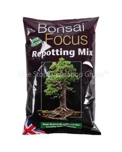 Bonsai Focus Repotting Mix 2 Litre
